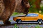 modele aut do sklejania